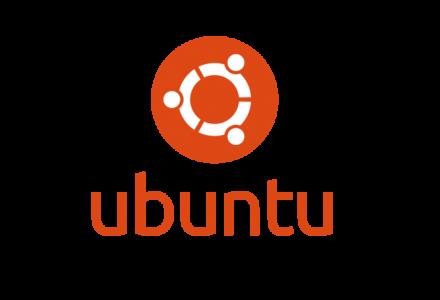 ubuntu20安装VNC-家里蹲的狐狸